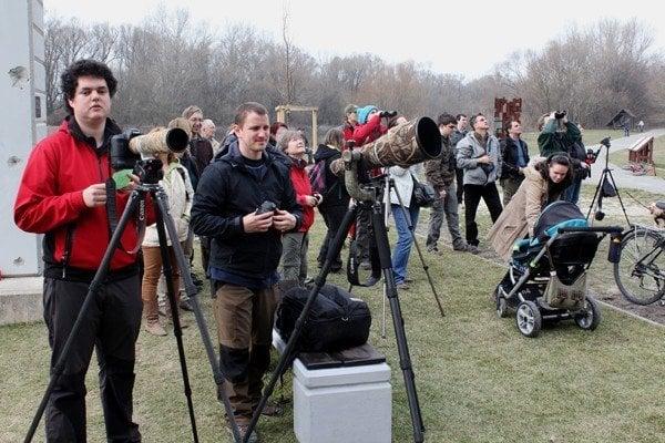 Pozorovanie vtáctva sa stála populárnym koníčkom aj na Slovensku