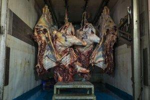 Poľské mäso likviduje slovenské bitúnky.