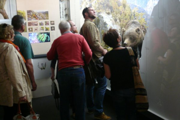 Expozícia sa návštevníkom páčila.