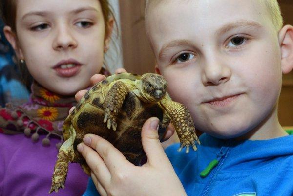 Nová súťaž má zvýšiť záujem detí o zoológiu.