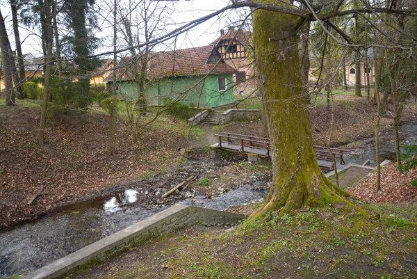 Naklonený strom vareáli parku. Korene stromu taktiež tlačia na múr.