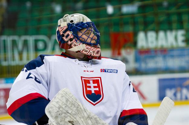 Budú oporami Slovenska už tradične brankári?