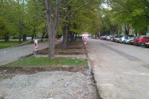 Vzniká stromovo-parkovacia aleja. Nachádza sa hneď vedľa cesty na Magurskej ulici.