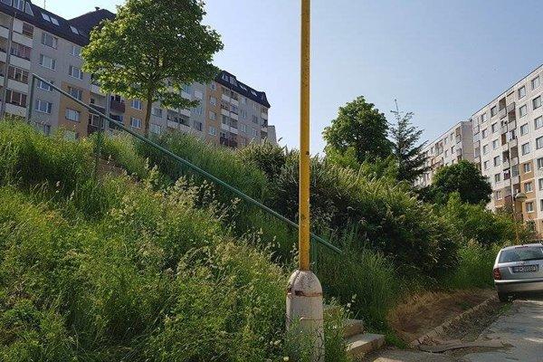 Ani prvé kosenie poriadne nezačalo. Na väčšine miest je trávová džungľa.