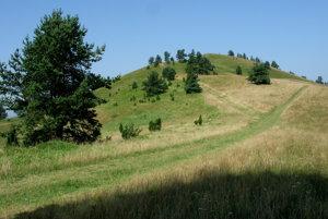 Wysoki Wierch (Šlachovky).