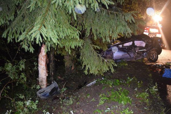 Pri nehode zahynula mladé dievča (17).