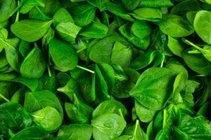 Kyselina listová. Táto živina, ktorá je obzvlášť dôležitá pre tehotné matky, sa nachádza v pečeni, špenáte, obilninách a chleboch, ako aj v iných potravinách.