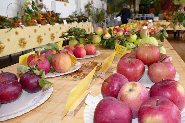 Podujatie Jablkové hodovanie pripravia na viacerých miestach Bratislavského kraja.