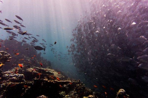Najkrajšie miesta na netradičné potápanie do jaskýň
