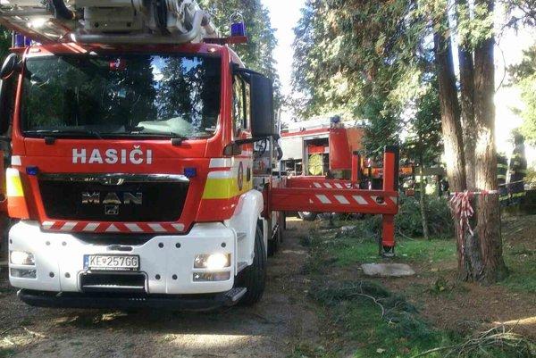Zásah hasičov na Rozálii. Strom ohrozoval návštevníkov cintorína.