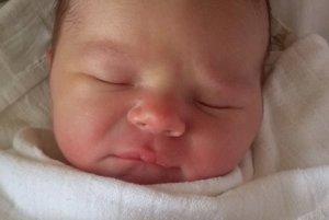 8e1e93001d21 Narodili sa ďalší malinkí Oravci. Vitajte medzi nami - SME