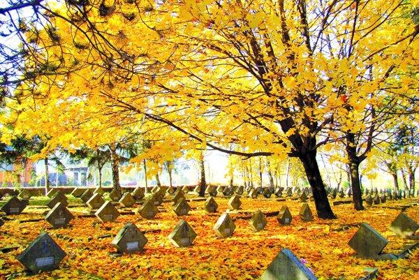 Na vojenský cintorín v Nitre príde pani Ľudmila zapáliť sviečku za dedka.
