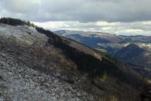 Vyrúbané holiny na kopcoch Nízkych Tatier.