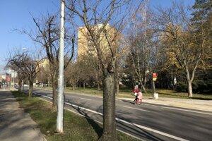 Soblahovská ulica