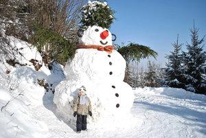 Zo súťaže Zlatíčka na snehu.