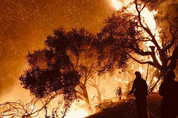 Extrémne horúčavy sa na mnohých miestach podpísali podpožiare.