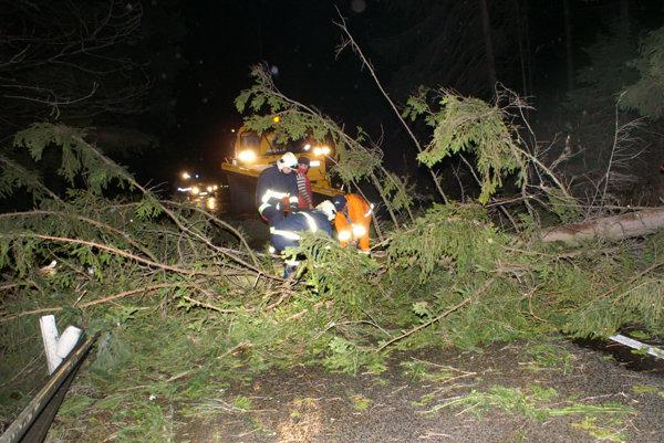 Cestu medzi Tvrdošínom a Námestovom ohrozujú padajúce stromy.