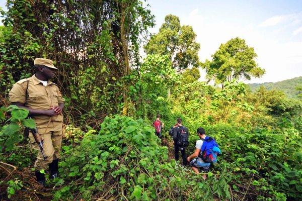 Cesta pralesom po stopách goríl je pre SLováka zážitkom.