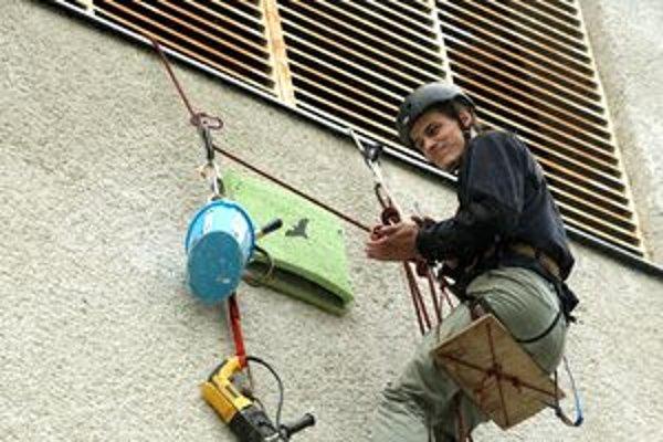 Inštalácia špeciálnych búdok pre netopiere a dážďovníky.
