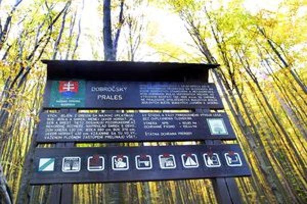 Dobročský a Badínsky prales patria k najstarším.