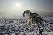 Posledné februárové dni udrie zima v plnej sile, potrvať by mala podľa predpovedí približne týždeň.