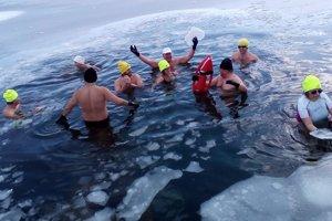 Obľubujú pobyt v ľadovej vode.