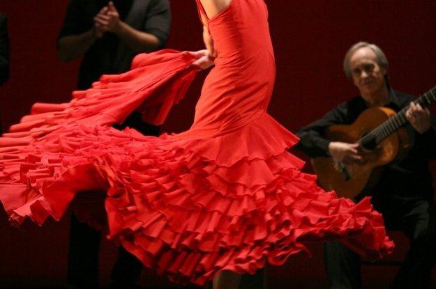 Flamenco v Casa Camarón