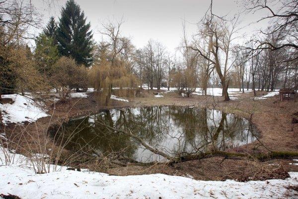 V areáli bývalej liečebne je vzácne jazierko, ktoré v zime nezamŕza.