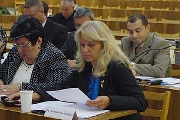 Jeden pozmeňovací návrh dala Katarína Drevenáková (na foto vpravo). Vyšiel z finančnej komisie. Druhý dal Juraj Smatana. Oba prešli.