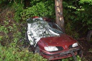 Renault skončil v strome.