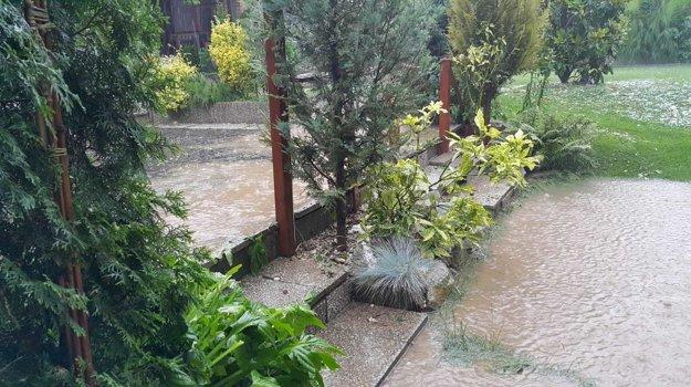 Záhrada pod vodou.