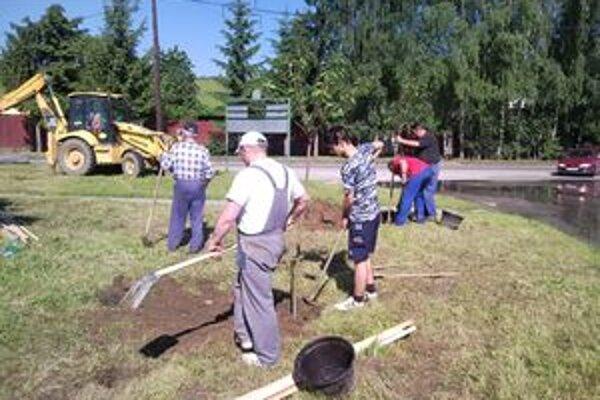 V Rosine chcú mať peknú obec, záhradkári tam vysadili čerešne.