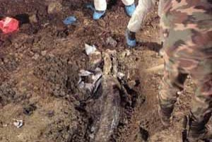 Mŕtvolu zavraždeného podnikateľa našli v Žiline.