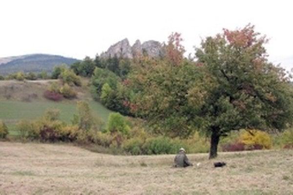 Obec Lednica je na vzácne staré sady vraj veľmi bohatá.