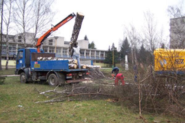 Pred Základnou školu na Hlinách VII. v piatok vyrúbali stromy. Malo by tu vyrásť ihrisko.