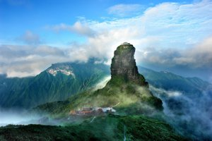 Fan-ťing-šan v Číne je považovaý za posvätný vrch budhistov. Žije v ňom niekoľko endemických druhov.