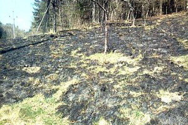 Aj v Lazoch pod Makytou horela najprv tráva, potom aj les.