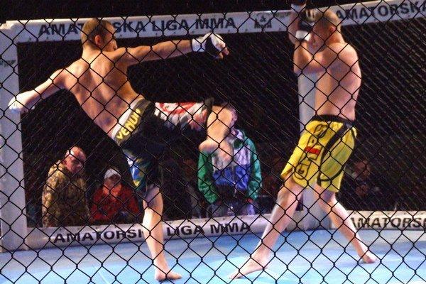V klietke videli diváci viacero bojových umení.