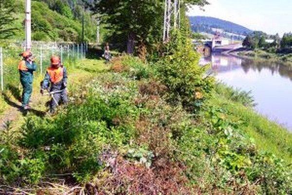 S čistením chodníka pomohli aj žiaci lesníckej školy.