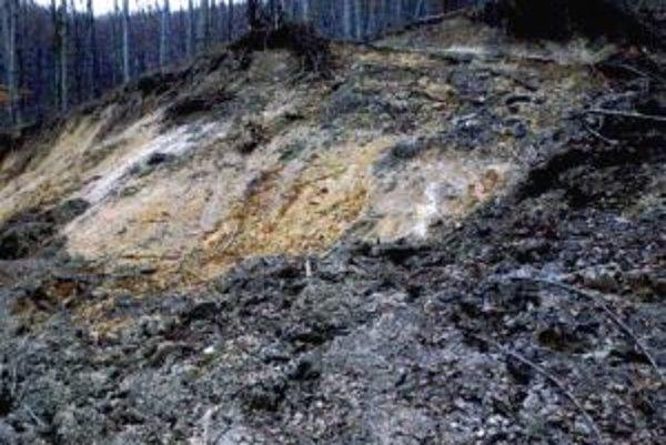Na niektorých miestach sa pôda predala aj päť metrov hlboko.