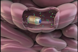 Vizualizácia kapsuly v čreve pri zbere vzoriek plynov.