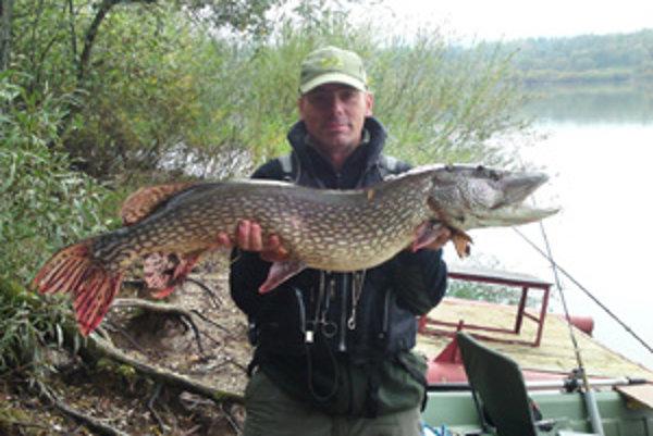 Stojedenásť centimetrov, deväť kilogramov. Miery šťuky, ktorú ulovil Albín Michalica v októbri na Oravskej priehrade.