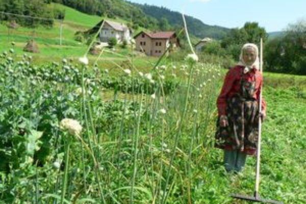 Aj vo svojom pokročilom veku si Mária Furielová väčšinu plodín dopestuje sama. Jej srdcovou záležitosťou sú mak a cesnak, ktorých je v záhradách čoraz menej.