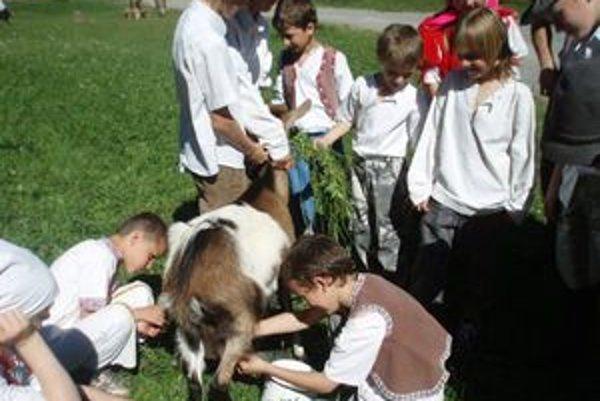 Deti si dojenie kráv, oviec i kôz naplno užívali.