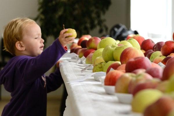 Výstavy ovocia a zeleniny sú  veľmi obľúbené. Aj u detí. (FOTO: ARCHÍV)