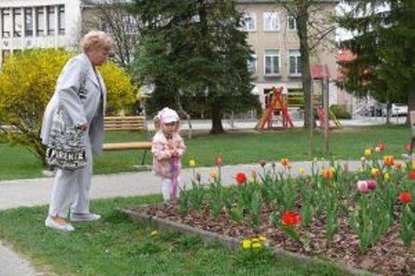 V Turčianskych Tepliciach je kvetinový záhon aj v praku pred mestským úradom.