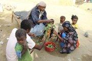 Rodina na severe Jemenu oberá listy viniča.
