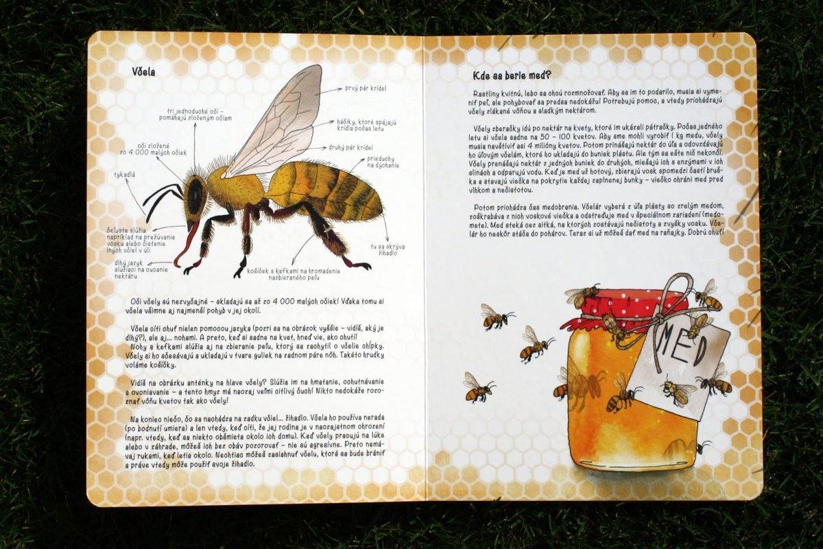 Zoznamka včelí