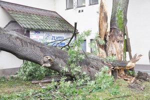 V nedeľu a pondelok miestami poriadne fúkalo. Vietor vyvracal na Orave stromy aj stĺpy.