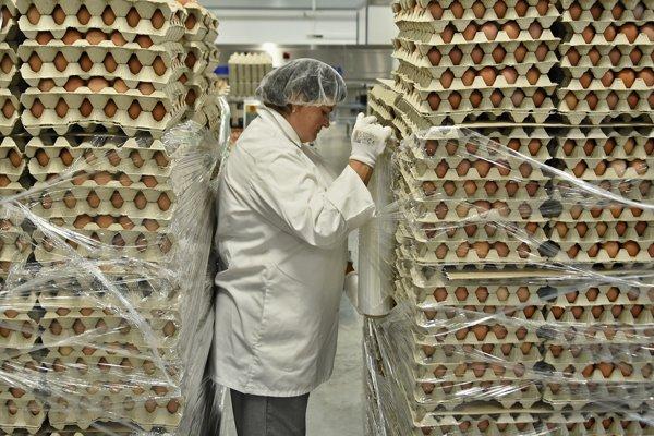 Žena balí vytriedené a zabalené vajcia od nosníc v novej triedičke v hydinárni Hydina Holding v Kežmarku.